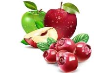 Конфитюр с кусочками ягод и фруктов АСТРИ ТН-10 КЛЮКВА с ЯБЛОКОМ, ведро 13кг