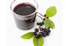 Чай черноплоднорябиновый с лимоном (концентрат), 40 г, 1 шт.