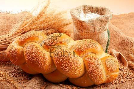 Дрожжи хлебопекарные сухие инстантные NEVADA в фольгированных пакетах, 0,5кг